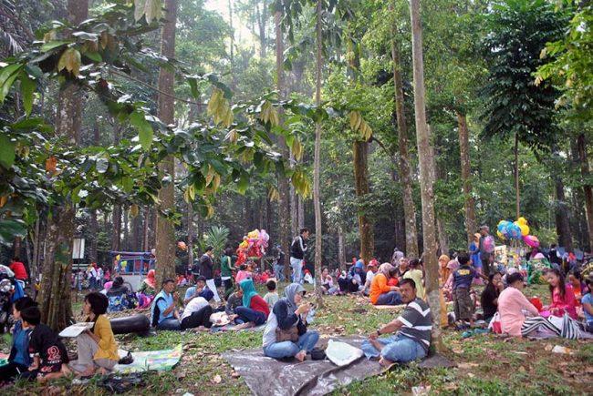Hutan Cifor via Republika