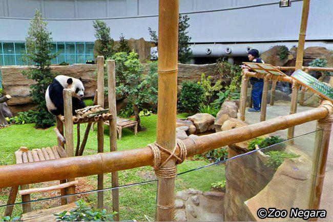 Kuala Lumpur National Zoo & Aquarium - Tempat Wisata di Kuala Lumpur