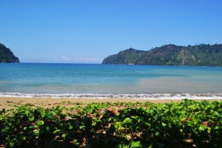 Berwisata Menikmati Keperawanan Pantai Sipelot Malang