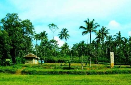 "Kampung Wisata Alam dan Ekologis ""Puspa Jagad"""