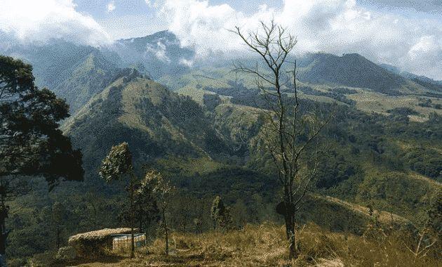 Bukit Binglis via Dikmedia