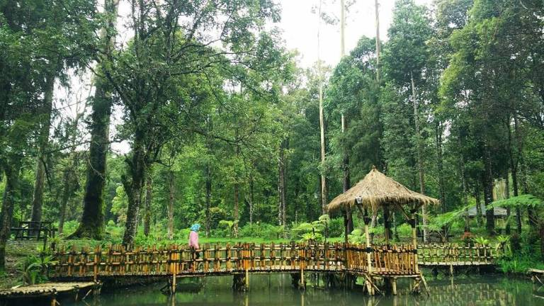 Cimanggu Hot Spring & Cottage
