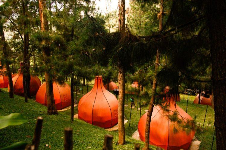 Hutan Pinus Maribaya ia Yourbandung