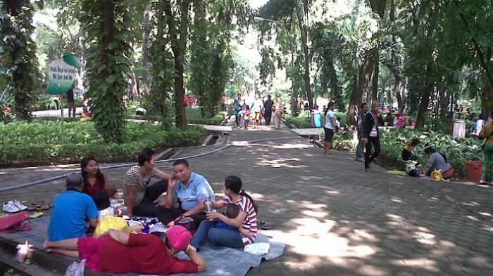 Kebun Bibit Surabaya via Surya