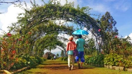 40 Tempat Wisata Di Medan Yang Wajib Dikunjungi