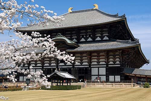 Kyoto dan Nara vKyoto dan Nara via Indojapaneseia Indojapanese