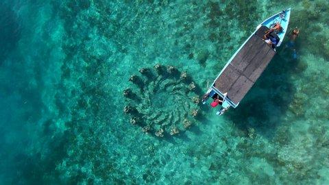 Nest via Shutterstock