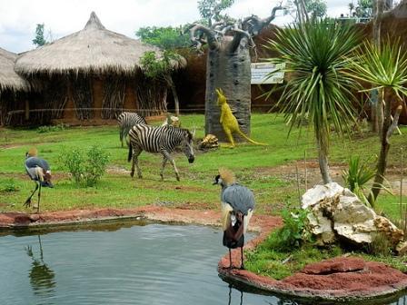 Objek Wisata Secret zoo Kebun Binatang Batu Malang