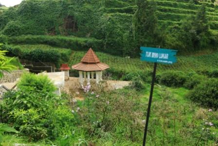 Tempat Bermain di Mata air Sungai Serayu Dieng - tempat wisata dieng