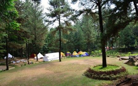 Tempat Wisata Alam Hutan Pinus Gunung Pancar Sentul