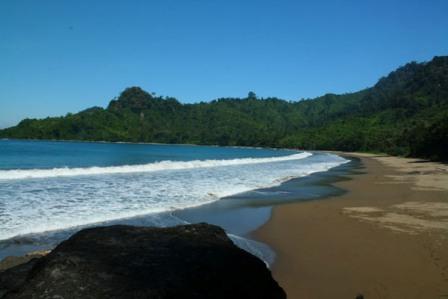 Tempat Wisata Keluarga Pantai Bandealit di Jember