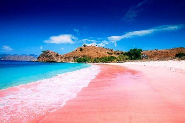 Tempat Wisata Pantai Pink di Lombok via IG @erlin_dhita