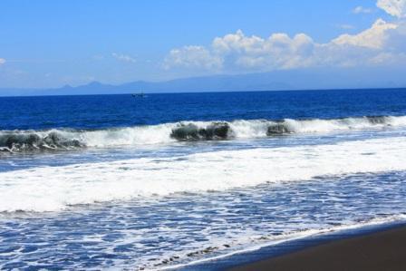 Tempat Wisata Pantai Puger di Jember