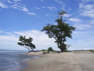 Tempat Wisata Pantai Teluk Sepang Bengkulu