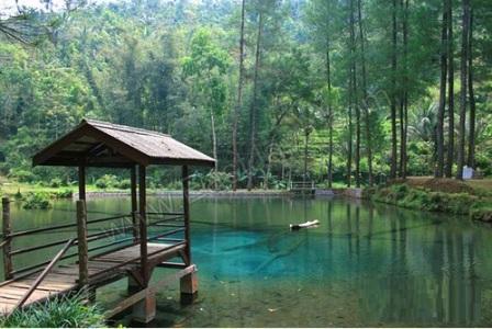 Silahkan Menuju Ke Desa Krisik Kecamatan Gandusari Kurang Lebih  Km Dari Kota Blitar Untuk Masuk Ke Dalam Area Wisata Anda Hanya Dikenakan