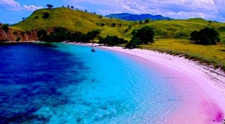 Tempat wisata pantai pink di lombok