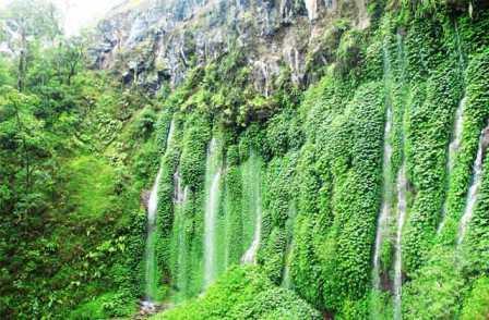 Wisata Alam 7 Air Terjun Sumber Pitu Malang