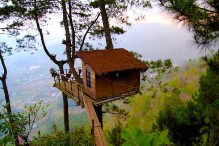 Wisata Alam Menikmati Kecantikan Alam Ala Omah kayu Malang