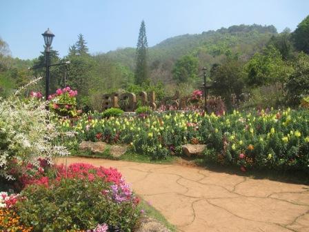 Destinasi Agrowisata Doi Ang Khang Mon di Thailand