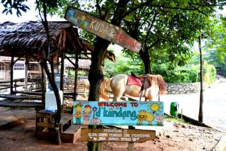 Liburan Seru ke D'Kandang Amazing Farm Depok