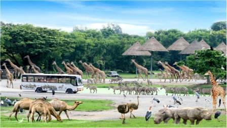 Liburan Seru ke Safari World di Thailand