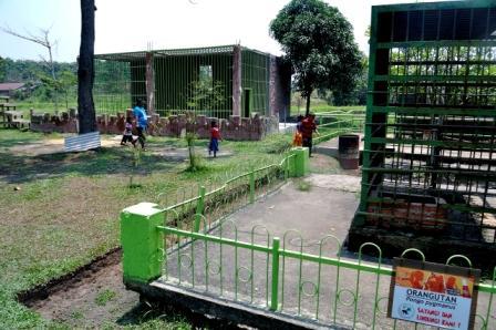 Tempat Rekreasi Kebun Binatang Sang Kulim di Pekanbaru - tempat wisata di Pekanbaru