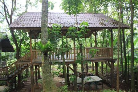 Tempat Wisata Alam Kampung 99 Pepohonan di Depok