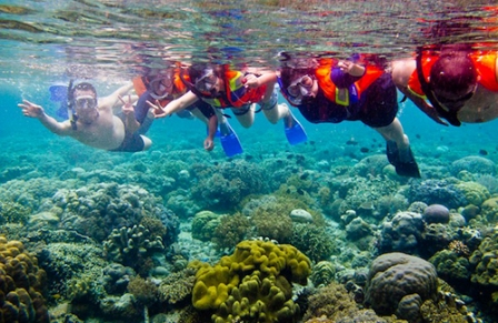 Tempat Wisata Paling Terkenal Taman Laut Bunaken di Manado