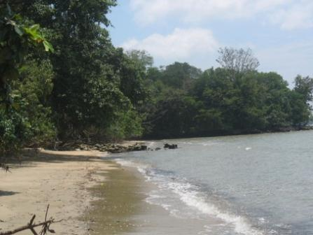 Tempat Wisata Pantai Muara Bendera di Bekasi