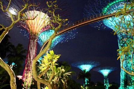 Objek Wisata Gardens by The Bay di Singapore