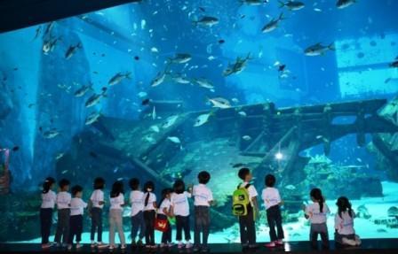 Wahana Liburan Keluarga Marine life park di Singapore