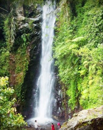 Unduh 6100 Background Bunga Air Terjun Terbaik