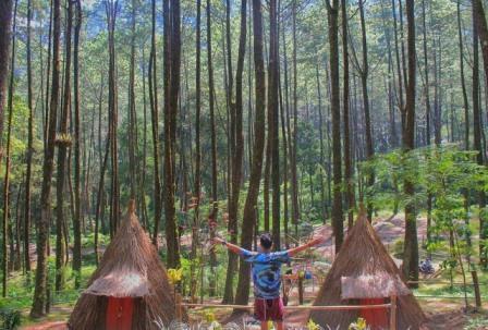 Camping Seru Di Sekipan, Kalisoro, Tawangmangu