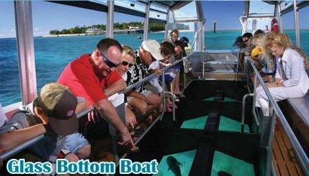 Glass Bottom Boat dan Pulau Penyu Tanjung Benoa