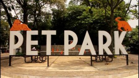 Pet Park - tempat nongkrong di Bandung