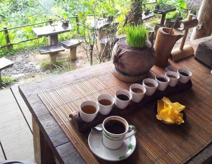 Wisata Kopi Bali