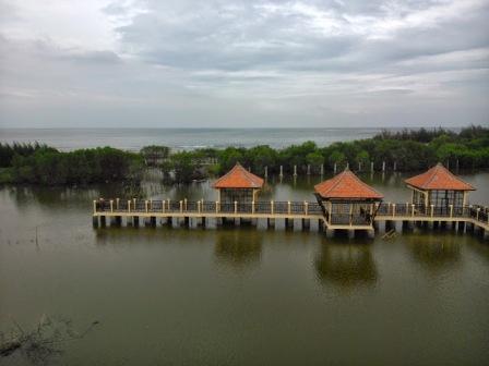 Objek Wisata Mangrove Park di Pekalongan