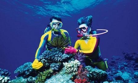 Snorkeling dan Diving (menyelam) Pantai Tanjung Lesung