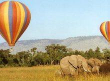 Balon udara taman safari bogor