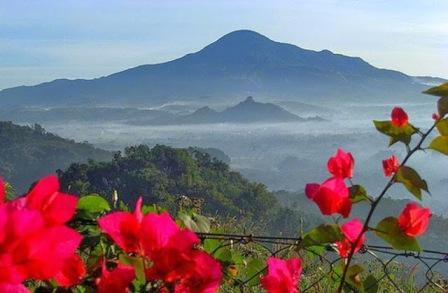 Mendaki Gunung Tampomas Sumedang