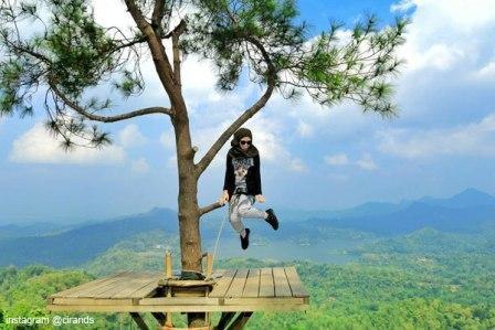 Objek Wisata Alam Kalibiru Kulonprogo