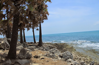 Pantai Ponjuk Timur Talango - tempat wisata di Madura