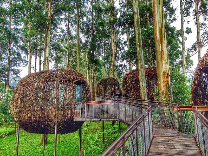 Rumah Makan Lutung Kasarung Dusun Bambu Lembang