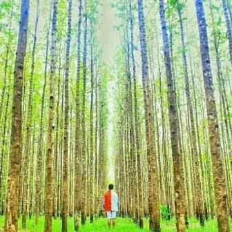 30 Tempat Wisata Di Kudus Jawa Tengah Yang Wajib Dikunjungi