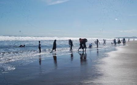 Obyek wisata Kebumen pantai petanahan