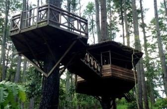 Taman Hutan Raya Pocut Meurah Intan