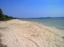 Panorama Pantai Ombak mati