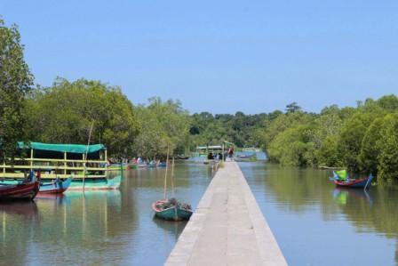 Kawasan Hutan Mangrove Bedul