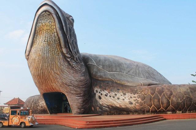 Kura-kura ocean park Pantai Kartini