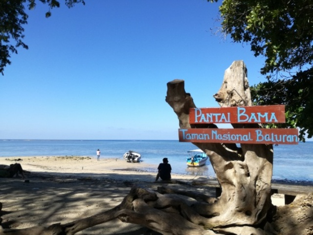 Pantai Bama Taman Nasional Baluran